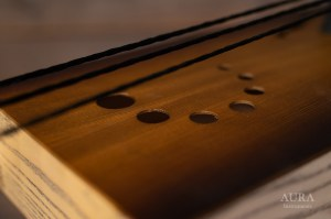 Aura Tagelharpa Cello detail